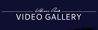 videogallery_btn