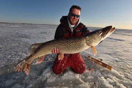 winter_northernpike