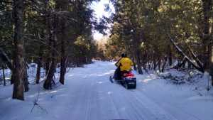 lake-of-the-woods-county-snowmobiling