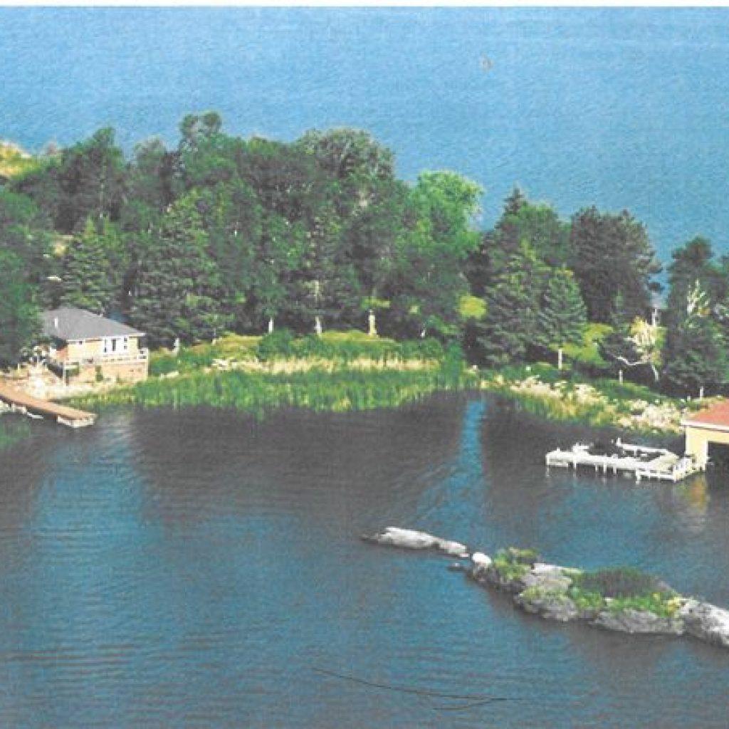 blackbird island