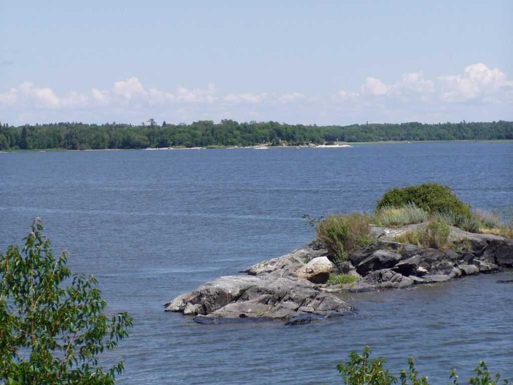 blackbird island 8